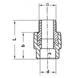 Муфта PP-R полипропиленовая комбинированная с наружной резьбой 20-3/4″ Pro Aqua PA23010P - 01